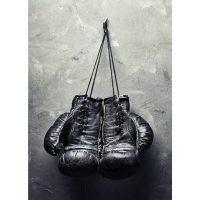 boxhandskar 50x70 cm